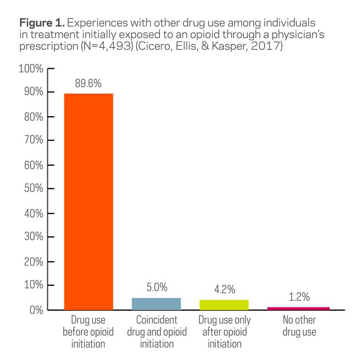 drug use among individuals initially exposed to opioids